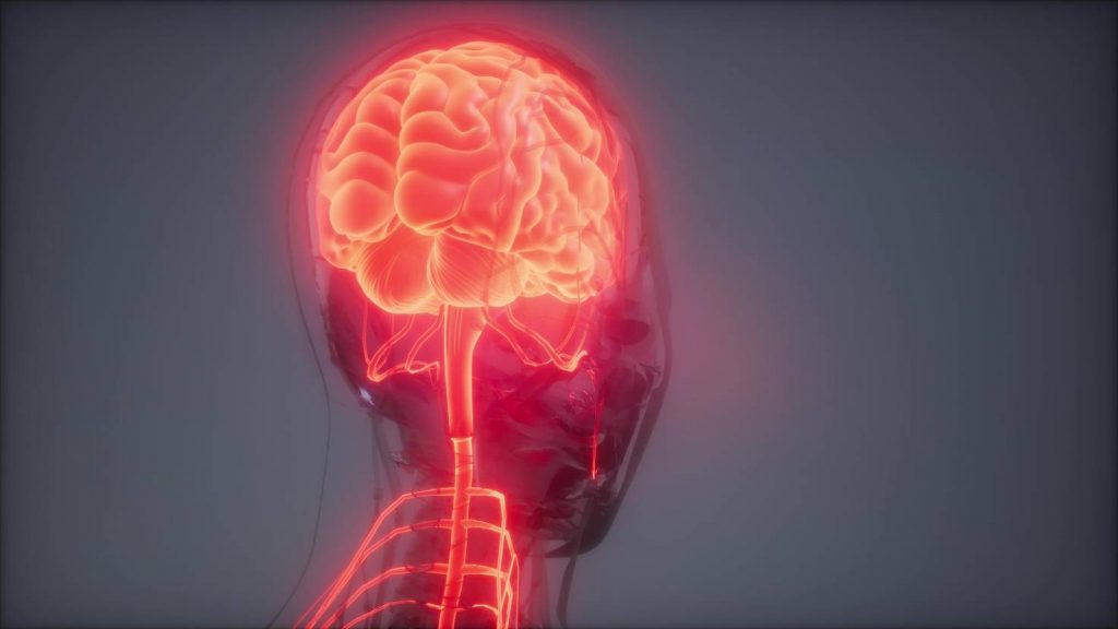 Maastricht UMC + provides a better brain tumor image