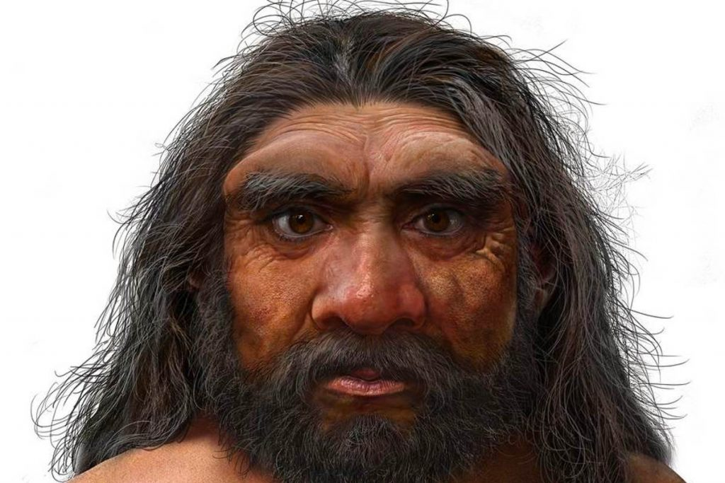 Discover new hominins that seem to be more closely related to us than Neanderthals