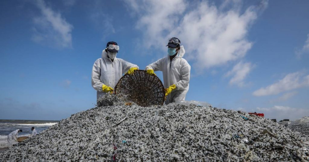 Sri Lanka Claims $40 Million in Compensation for a Burning Cargo Ship, which Has Already Collected 1,200 Tons of Plastic Granules and Other Waste |  abroad