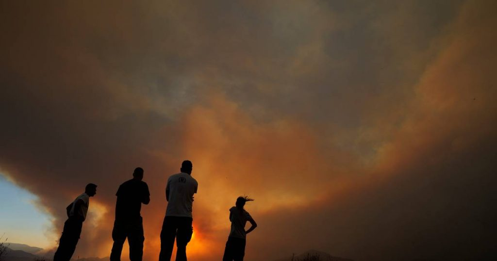 Cyprus requests international assistance to fight forest fires |  abroad