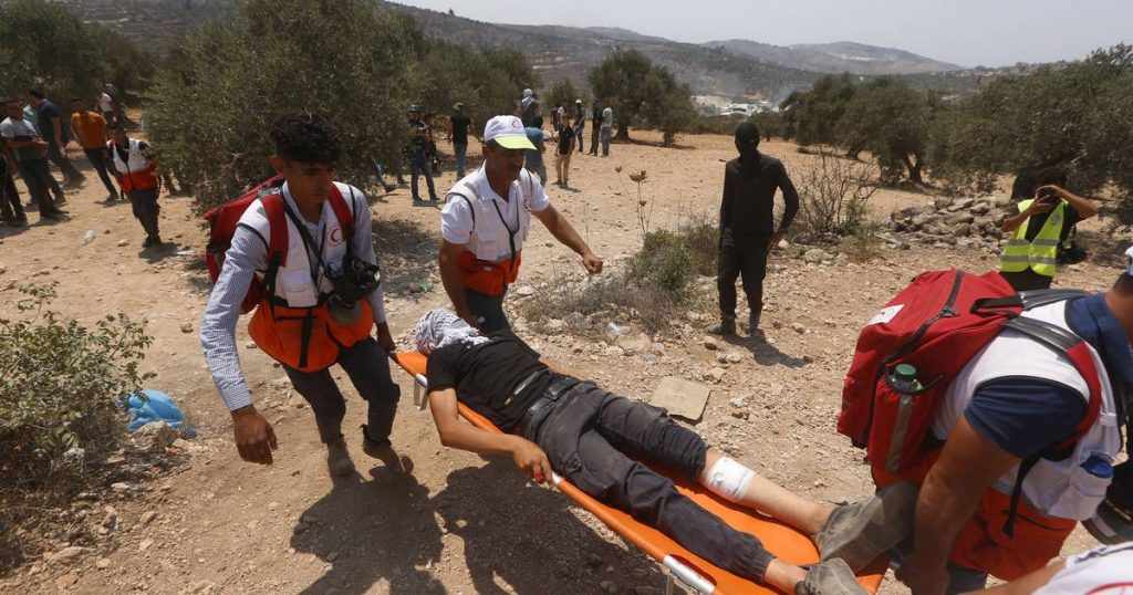 Nearly 300 Palestinians were injured in clashes with the Israeli army |  abroad