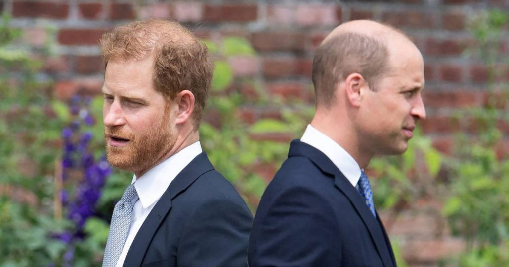 Royal biographer: 'Harry's next step? Prince William fears the worst'   Royal
