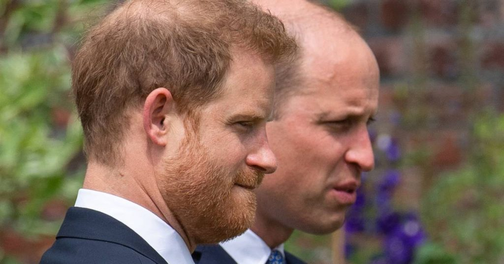 This is why William and Harry did not give a separate speech: 'It would have been disastrous'    Property