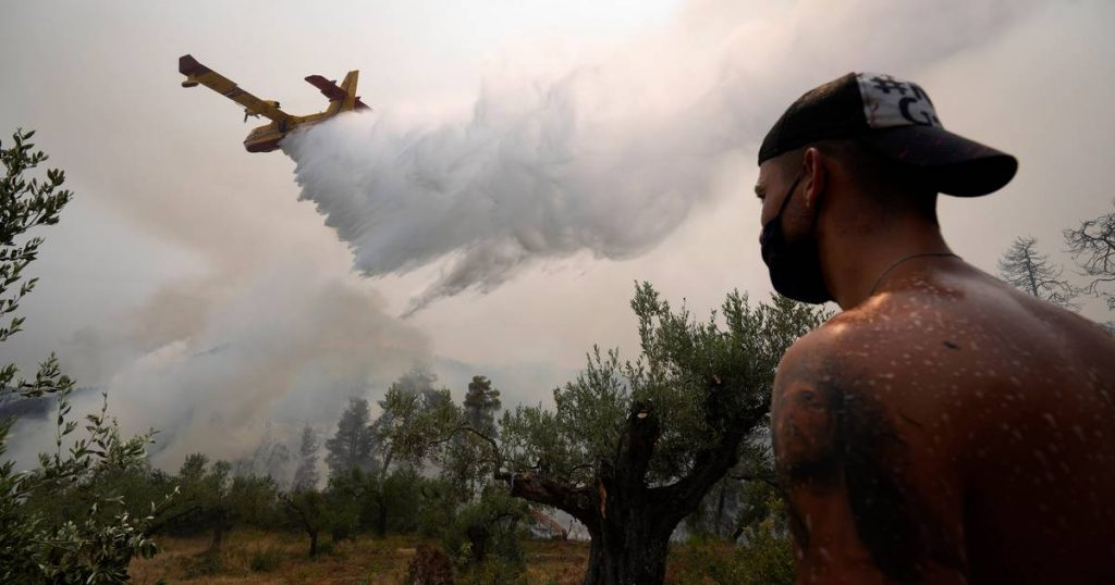 """Forest fires on the Greek island of Evia: """"Fires destroy nature, 2,000 people evacuated""""    abroad"""