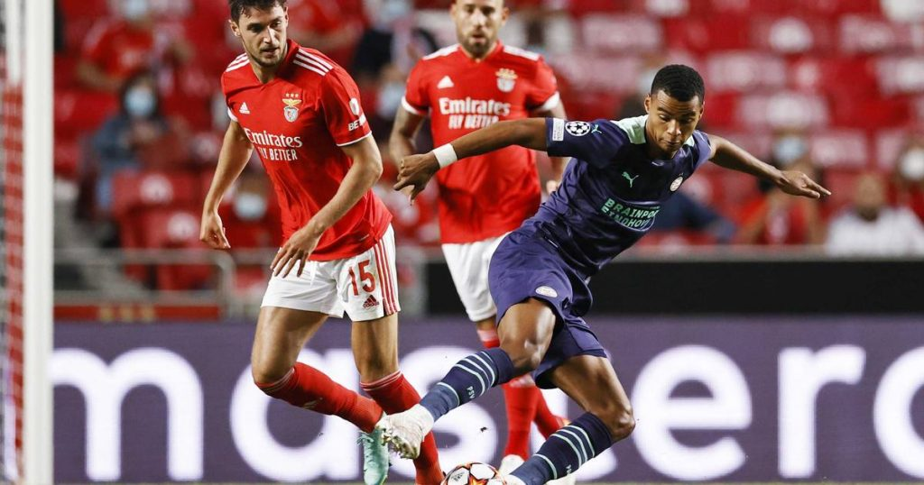 PSV lose 2-1 to Benfica but can be brave from a good second half |  sports