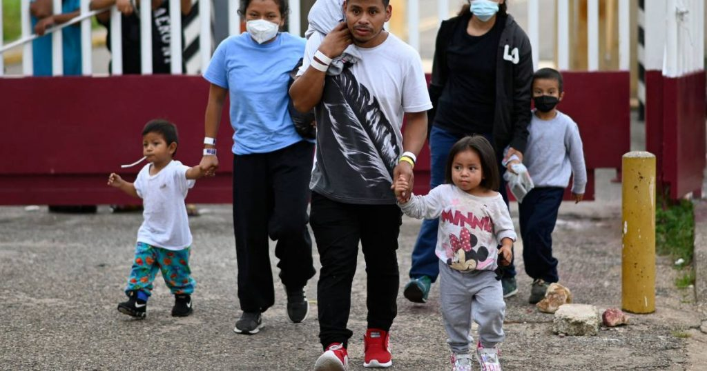 Judge orders US to stop expelling immigrant families |  Abroad