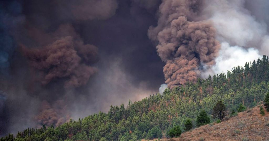 Volcanic eruption in La Palma: 'sound of 20 fighter planes departing', 5,000 people have already been evacuated |  Instagram VTM NEWS