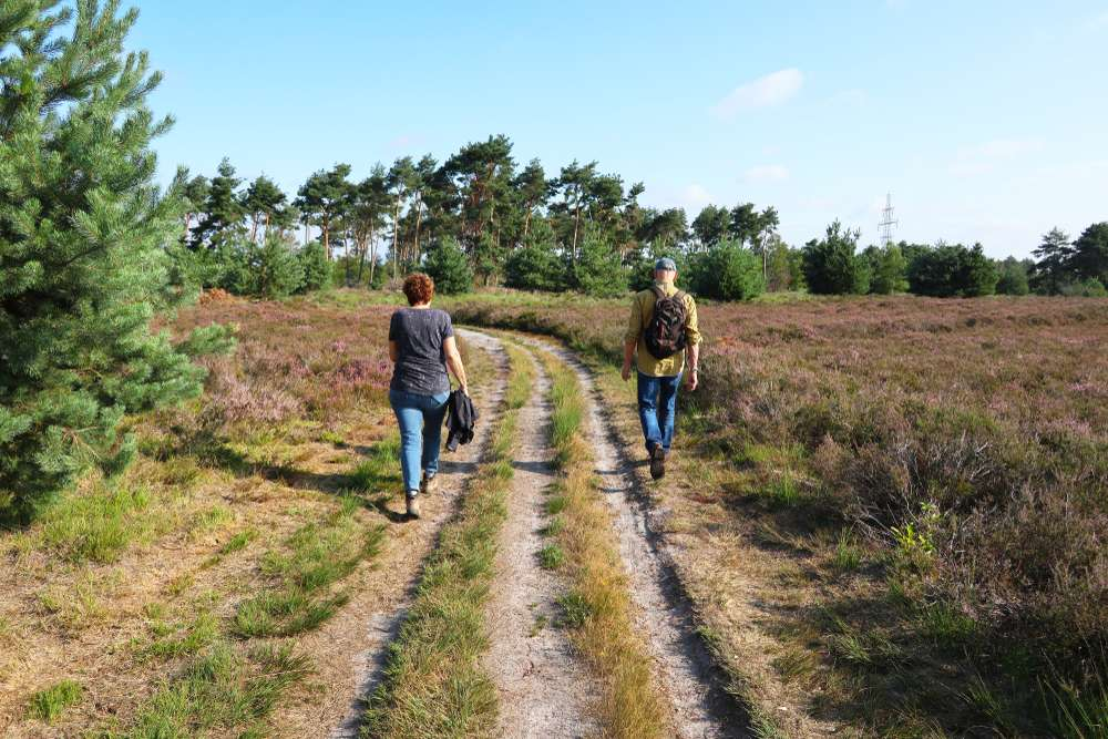 The county wants to organize crowds in the nature of Veluwe